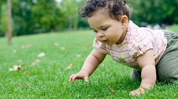 Bebé gateando en el pasto